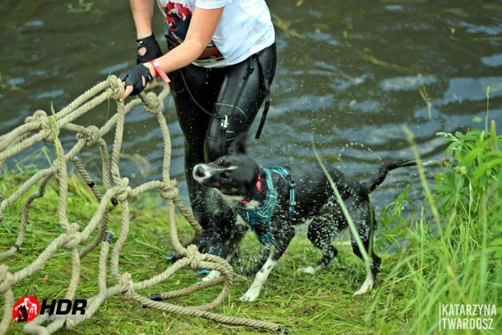 Jedna z ostatnich przeszkód Hard Dog Race - kanał z wodą