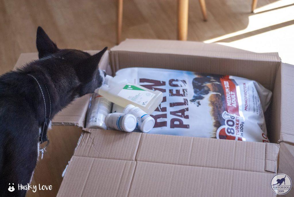 Viking zagląda do otwartego kartonu z przesyłką od firmy VetExpert
