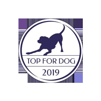 Logo plebiscytu Top for Dog